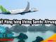 Ra mắt Hãng hàng không Bambo Airway 2018- Việt Mỹ