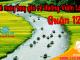 Vé máy bay giá rẻ đường Vườn Lài quận 12 - Việt Mỹ