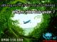 Vé máy bay giá rẻ đường Phạm Hữu Lầu quận 7 - Việt Mỹ