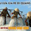 Vé tàu lửa giá rẻ đi Quảng Ngãi